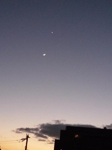 月と金星1