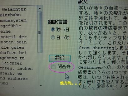 ドイツ語翻訳1