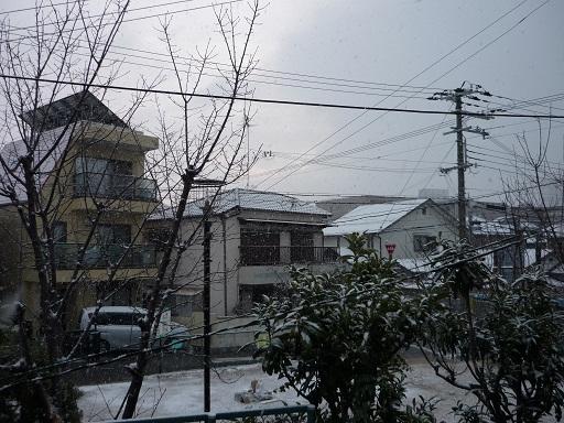 2月8日 朝、雪