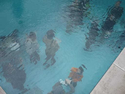 中を覗くプール