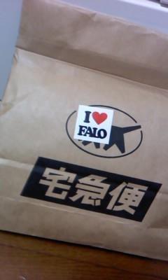 FALO2